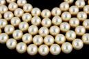 Swarovski pearl, light gold, 8mm - x50