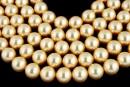 Swarovski pearl, gold, 8mm - x50