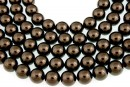 Swarovski pearl, brown, 10mm - x20