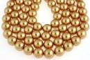 Swarovski pearl, bright gold, 6mm - x100