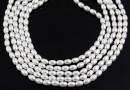 Swarovski pearl, white, 4x3mm - x100